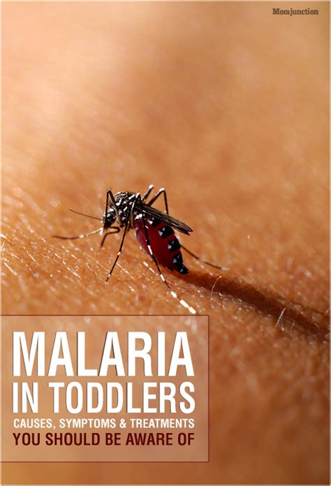 Malaria In Toddlers - Causes, Symptoms And Treatments